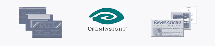OpenInsight